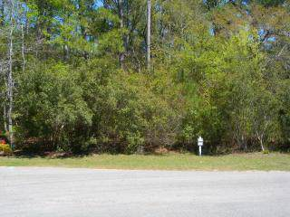 673 Carolina Bay Court, Southport, NC 28461 (MLS #100182823) :: Barefoot-Chandler & Associates LLC