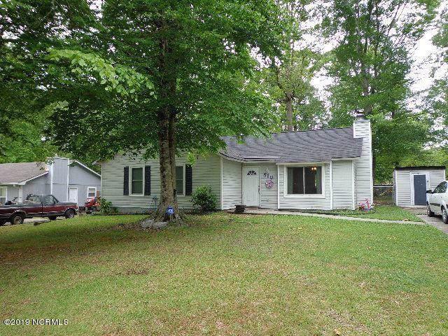 810 Mill River Road, Jacksonville, NC 28540 (MLS #100183214) :: Berkshire Hathaway HomeServices Hometown, REALTORS®