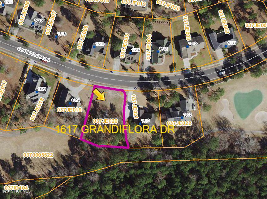 1617 Grandiflora Drive - Photo 1