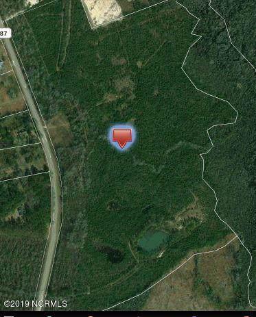 3.2 Ac George Ii Highway, Winnabow, NC 28479 (MLS #100184997) :: The Keith Beatty Team