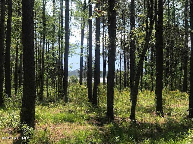 Lot 16 Peterson Creek Road, Aurora, NC 27806 (MLS #100186252) :: The Keith Beatty Team