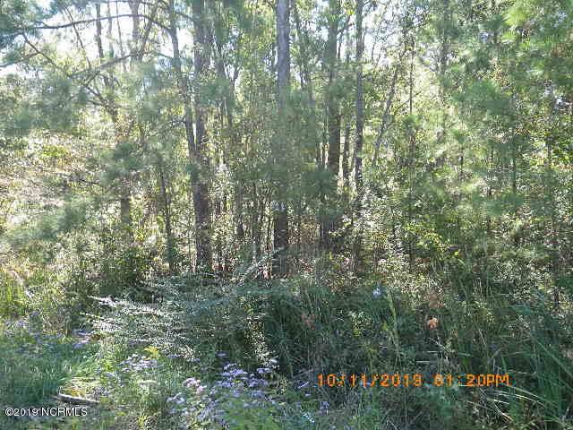 000000 Walton Road, Jacksonville, NC 28454 (MLS #100188426) :: Castro Real Estate Team