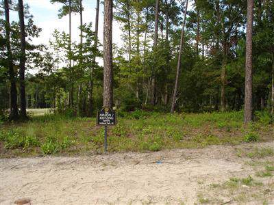 580 Lindgrove Place SW, Ocean Isle Beach, NC 28469 (MLS #100189434) :: RE/MAX Essential