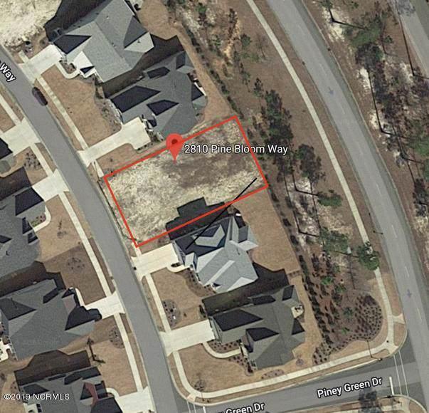 2810 Pine Bloom Way, Leland, NC 28451 (MLS #100191696) :: Welcome Home Realty