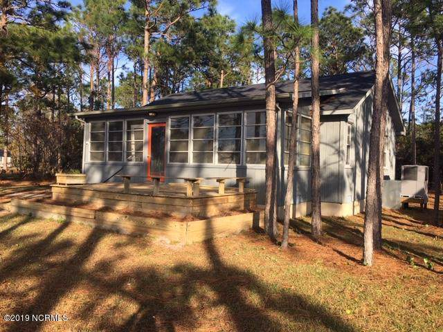 254 Cottontail Run, Newport, NC 28570 (MLS #100193976) :: Lynda Haraway Group Real Estate