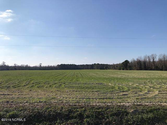 149 Cy Cavenaugh Road, Warsaw, NC 28398 (MLS #100195687) :: David Cummings Real Estate Team