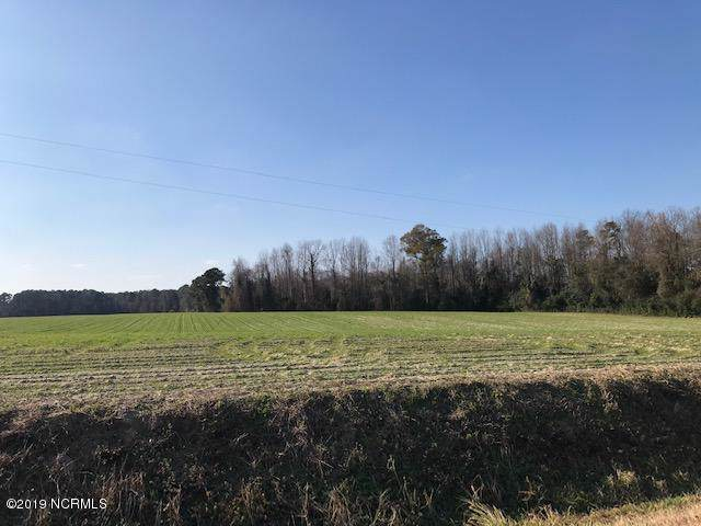 149 Cy Cavenaugh Road Road, Warsaw, NC 28398 (MLS #100195688) :: David Cummings Real Estate Team