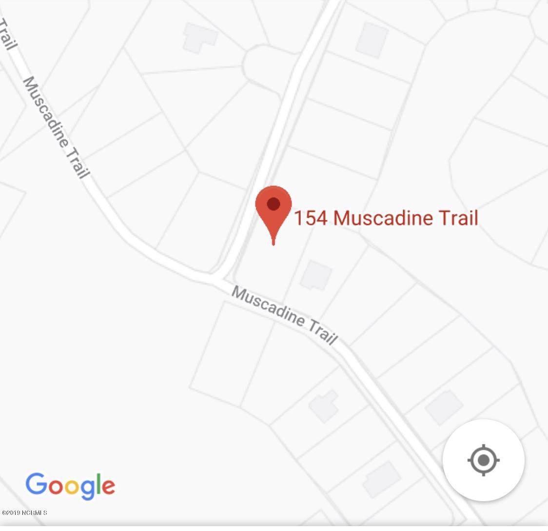 154 Muscadine Trail - Photo 1