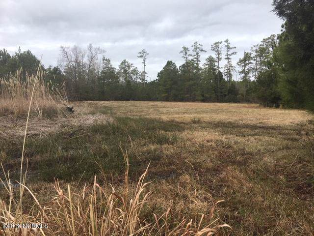 Lot 106 E Dowry Creek, Belhaven, NC 27810 (MLS #100200420) :: RE/MAX Elite Realty Group