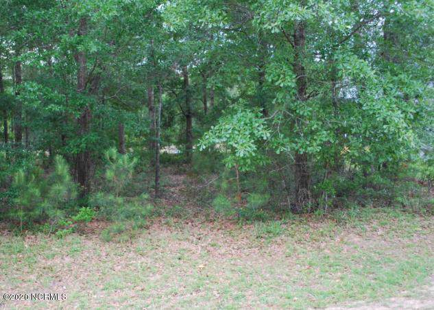 3393 Four Water View SW, Supply, NC 28462 (MLS #100201072) :: Castro Real Estate Team