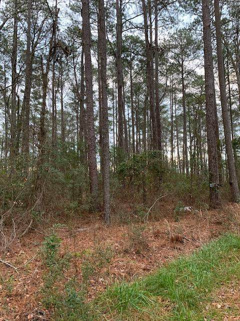 Lot 6 Strawhorn Drive, Aurora, NC 27806 (MLS #100205858) :: Vance Young and Associates