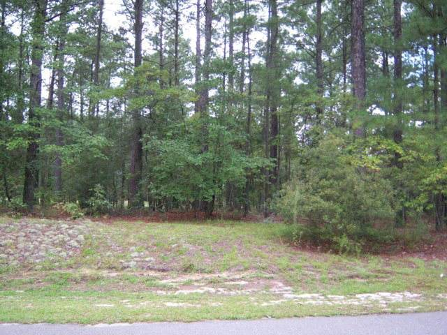 44 Loblolly Court, Wagram, NC 28396 (MLS #100210041) :: Frost Real Estate Team