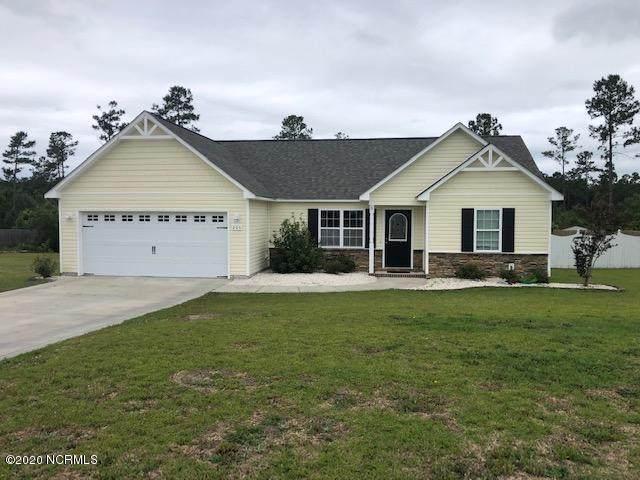 205 Lockwood Court, Hubert, NC 28539 (MLS #100219208) :: Courtney Carter Homes