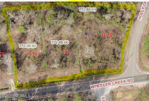 159 Wheeler Creek Road, Sneads Ferry, NC 28460 (MLS #100224287) :: The Cheek Team