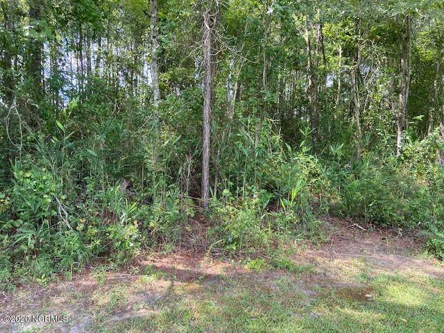 197 Mckenzie Trail, Whiteville, NC 28472 (MLS #100231639) :: RE/MAX Essential