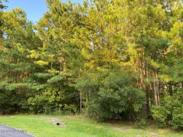 3 Alexander Drive, Belhaven, NC 27810 (MLS #100233404) :: Frost Real Estate Team