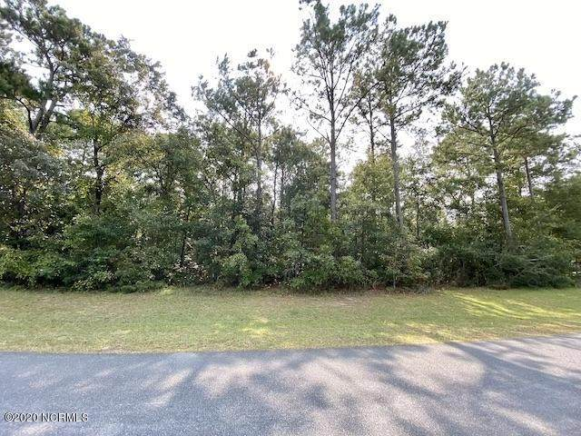 178 Marina Wynd Way, Sneads Ferry, NC 28460 (MLS #100239463) :: RE/MAX Essential