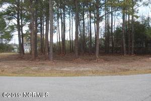 107 Mainsail Drive, Sneads Ferry, NC 28460 (MLS #100241163) :: Castro Real Estate Team