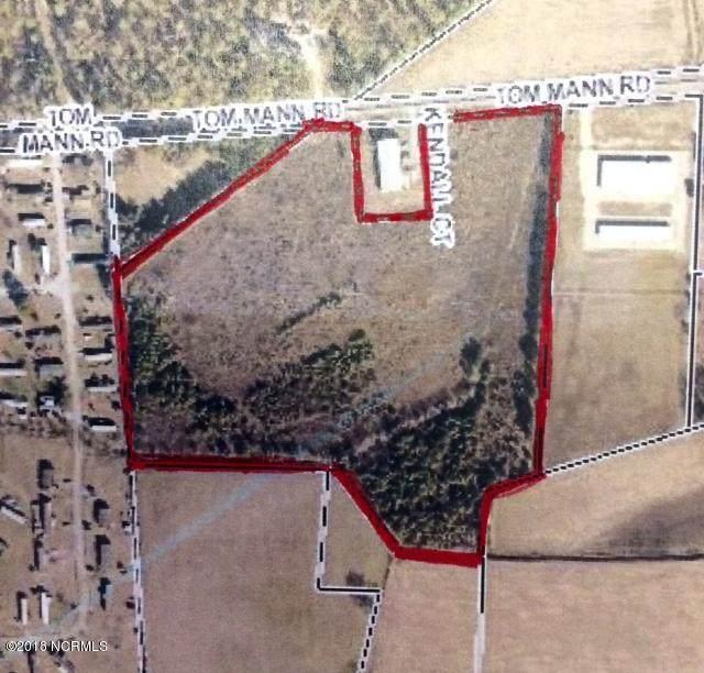 1 Tom Mann Road, Newport, NC 28570 (MLS #100241909) :: Destination Realty Corp.