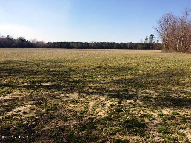 283 Acres Cc Road, Garland, NC 28441 (MLS #100243189) :: Donna & Team New Bern