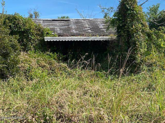 159 Lucille Lewis Drive, Marshallberg, NC 28553 (MLS #100243556) :: Liz Freeman Team