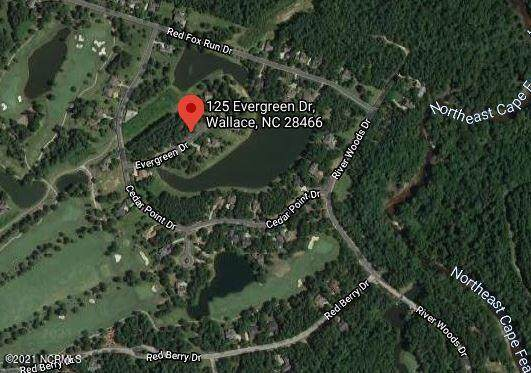 125 Evergreen Drive, Wallace, NC 28466 (MLS #100259353) :: The Keith Beatty Team
