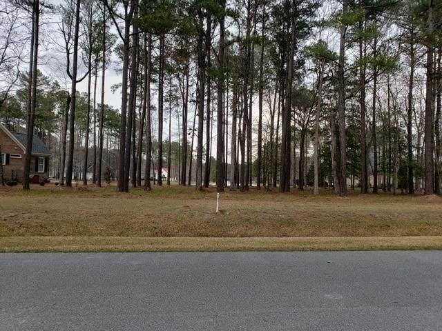 417 Cypress Landing Trail, Chocowinity, NC 27817 (MLS #100263655) :: The Tingen Team- Berkshire Hathaway HomeServices Prime Properties