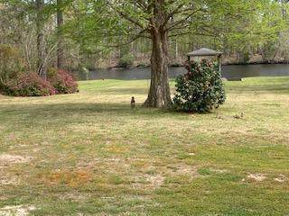 240 Shoreline Drive, New Bern, NC 28562 (MLS #100265611) :: Donna & Team New Bern
