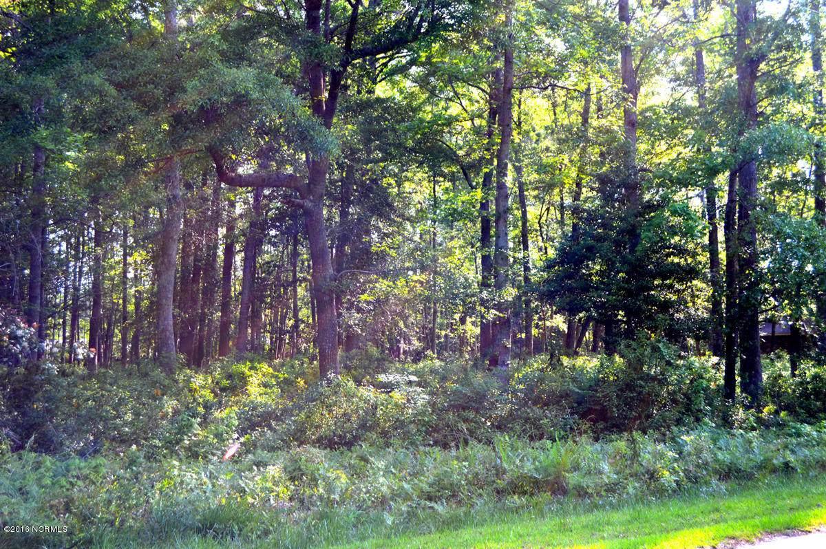 17 Pinewood Drive - Photo 1