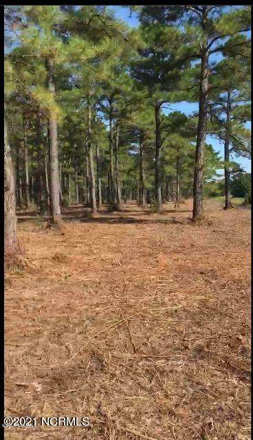 1700 Plantation Road, Wilmington, NC 28411 (MLS #100271509) :: Vance Young and Associates