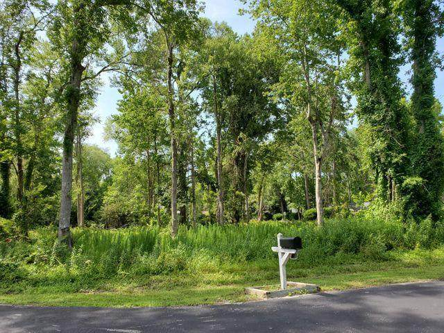 2 Petrel Court, Carolina Shores, NC 28467 (MLS #100271759) :: Carolina Elite Properties LHR