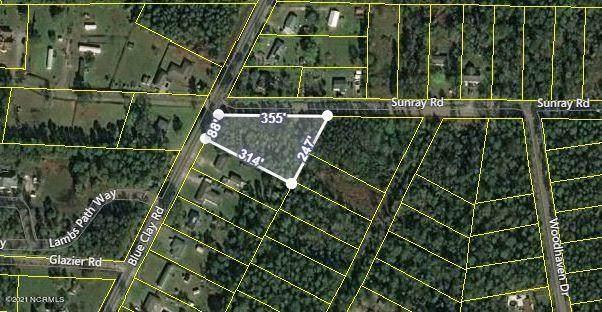 5340 Blue Clay Road, Castle Hayne, NC 28429 (MLS #100272873) :: David Cummings Real Estate Team