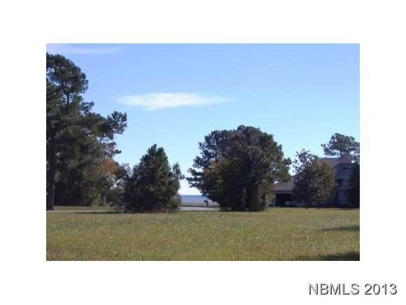 6001 Dolphin Road, Oriental, NC 28571 (MLS #100276435) :: Frost Real Estate Team