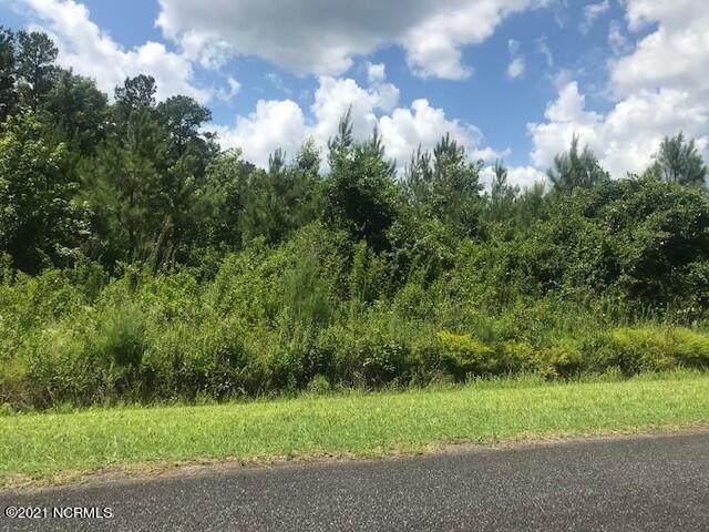 0 Borough Road, Currie, NC 28435 (MLS #100281983) :: CENTURY 21 Sweyer & Associates