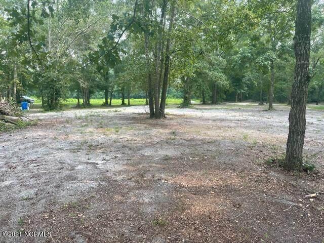 3r White Tail Lane, Watha, NC 28478 (MLS #100283243) :: CENTURY 21 Sweyer & Associates