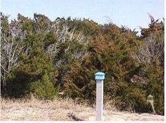 23 Mourning Warbler Trail, Bald Head Island, NC 28461 (MLS #100287873) :: Coldwell Banker Sea Coast Advantage