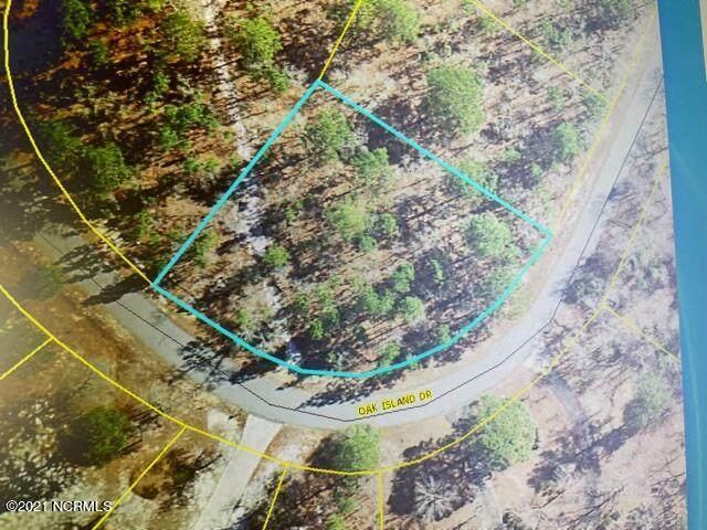 238 Oak Island Drive, Harrells, NC 28444 (MLS #100289526) :: David Cummings Real Estate Team