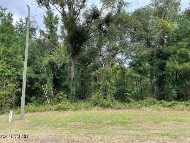 45 River Birch Road, Burgaw, NC 28425 (MLS #100289849) :: Donna & Team New Bern