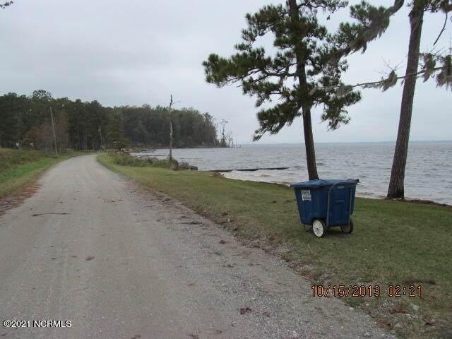 17 Pine Cone Lane, Blounts Creek, NC 27814 (MLS #100294364) :: RE/MAX Elite Realty Group