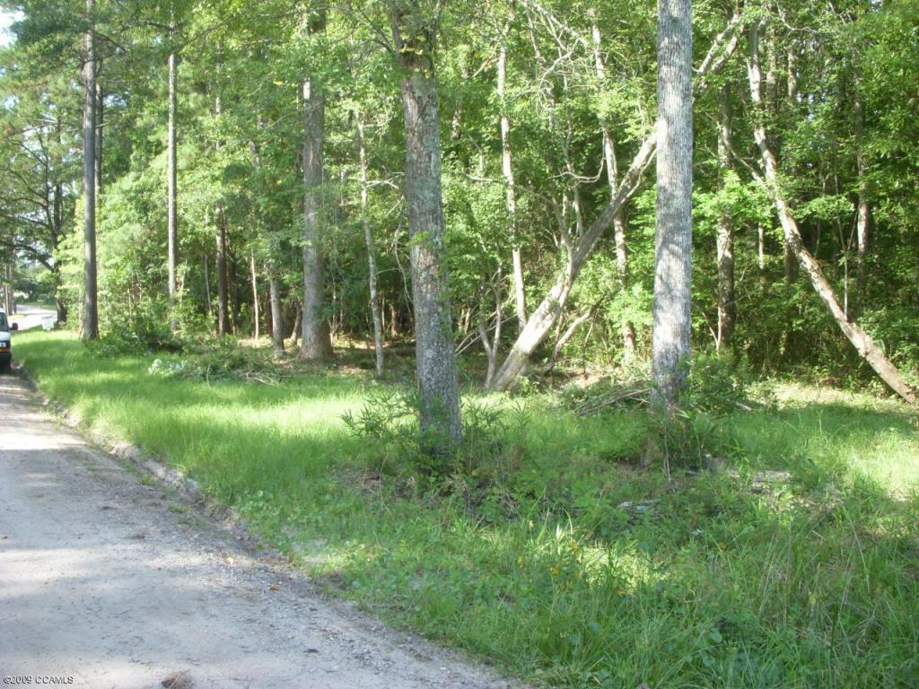 101 Little Kinston Rd. Lane, Swansboro, NC 28584 (MLS #10903488) :: Century 21 Sweyer & Associates