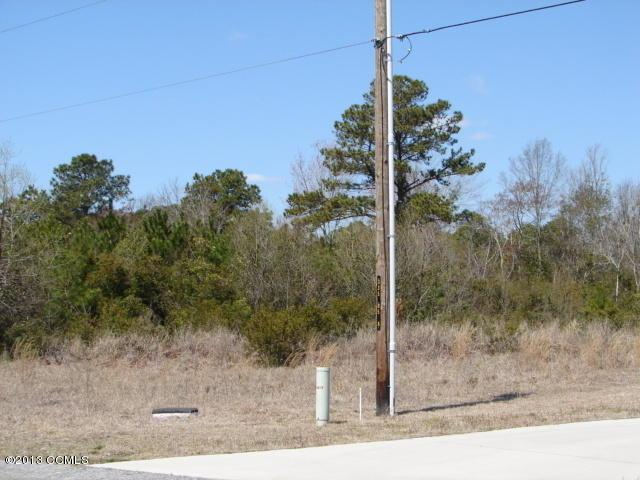 58 Sanders Drive, Hubert, NC 28539 (MLS #11301816) :: Century 21 Sweyer & Associates