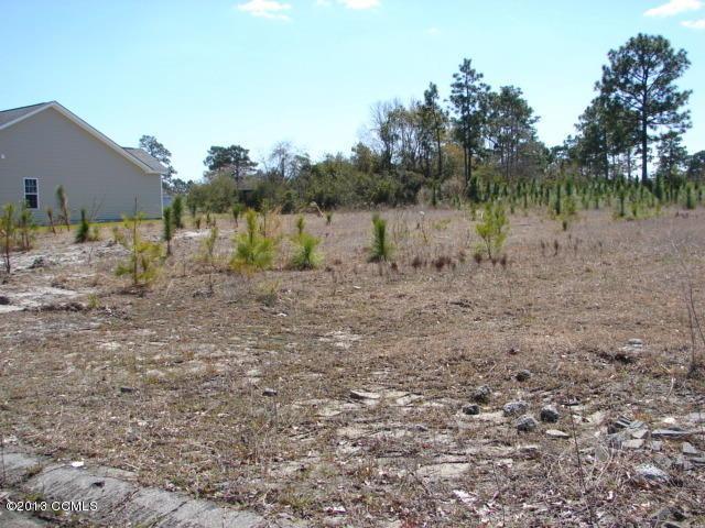 176 Sanders Drive, Hubert, NC 28539 (MLS #11301821) :: Century 21 Sweyer & Associates