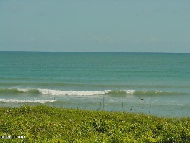 101 Ocean Shore Lane, Pine Knoll Shores, NC 28512 (MLS #11502768) :: Harrison Dorn Realty