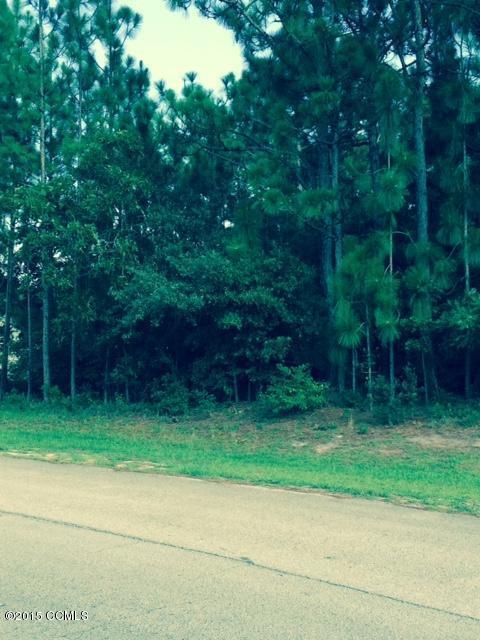 100 150 Forest Line Dr, Newport, NC 28570 (MLS #11504139) :: Century 21 Sweyer & Associates
