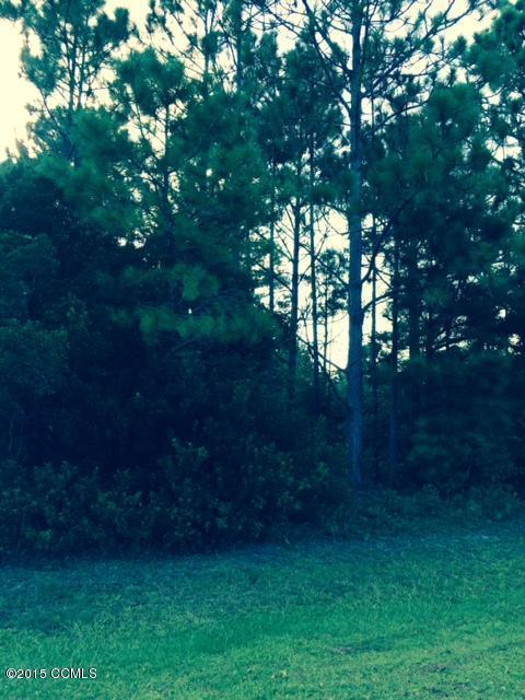 137 Forest Line Drive, Newport, NC 28570 (MLS #11504141) :: Century 21 Sweyer & Associates