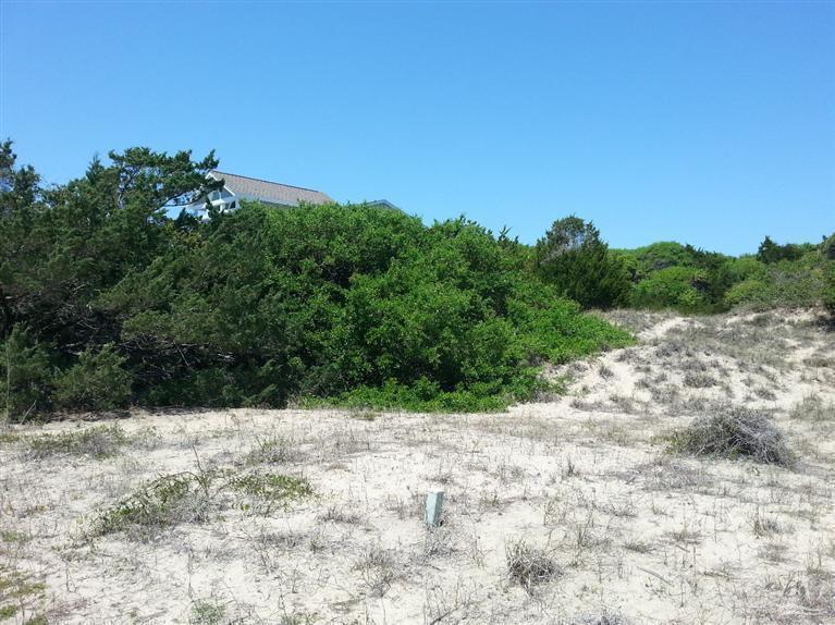 17 Laughing Gull Trail, Bald Head Island, NC 28461 (MLS #20682870) :: Century 21 Sweyer & Associates