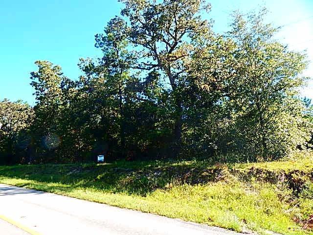 168 Mintz Cemetary Road, Ocean Isle Beach, NC 28469 (MLS #20692508) :: Century 21 Sweyer & Associates