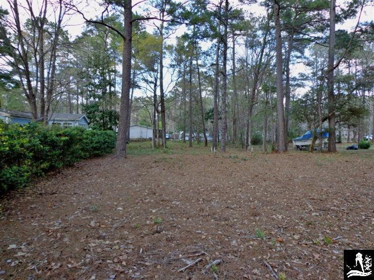 364 Ocean Forest Drive NW, Calabash, NC 28467 (MLS #20694522) :: Century 21 Sweyer & Associates