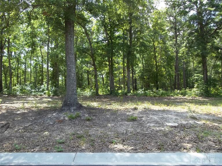3832 Hallmark Road NE, Leland, NC 28451 (MLS #30477612) :: Century 21 Sweyer & Associates