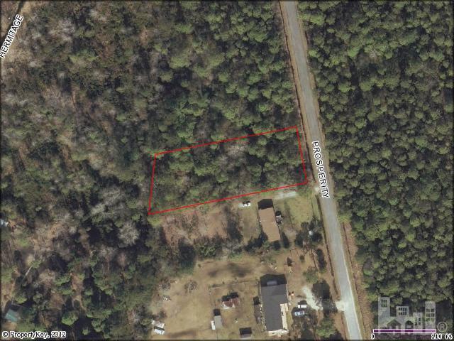 5413 Prosperity Lane, Castle Hayne, NC 28429 (MLS #30481409) :: Century 21 Sweyer & Associates